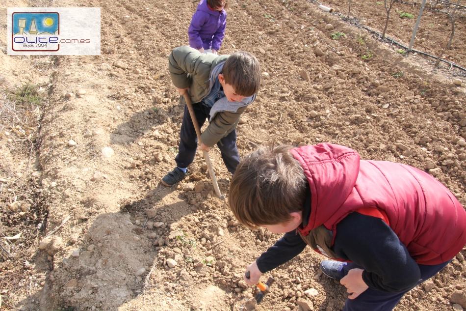 Olite.Familias de Olite, celebran el Día del Arbol plantando en el paraje del Estremal.