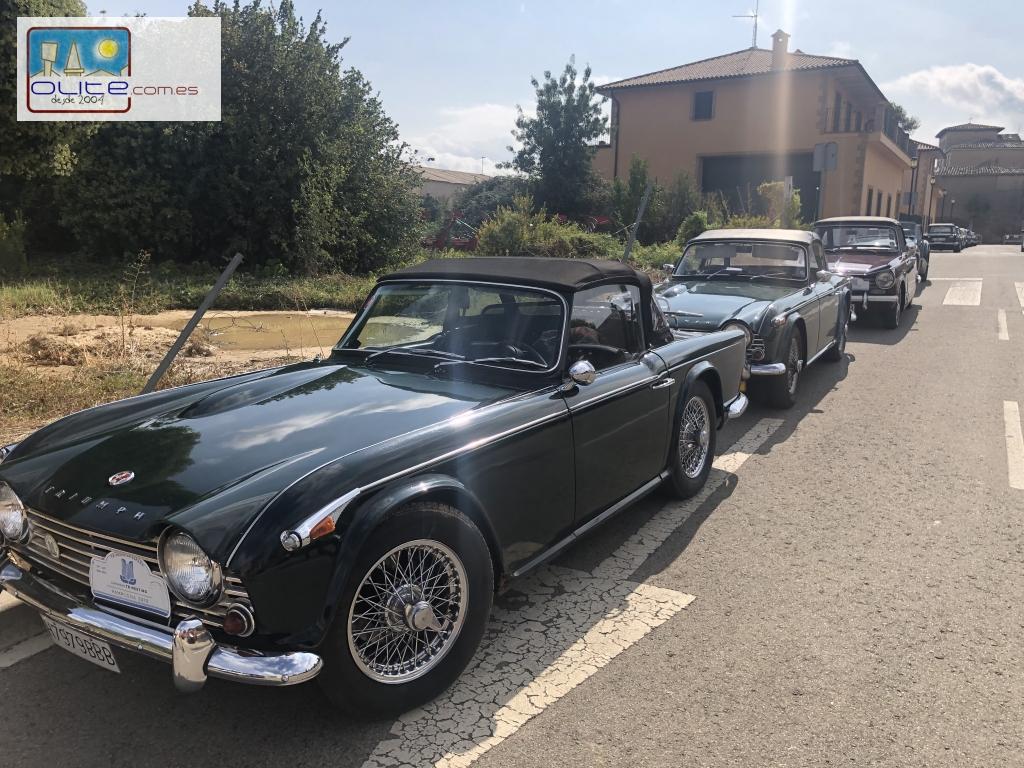 Olite.120 coches Triumph llegados de toda Europa realizan una parada en Olite