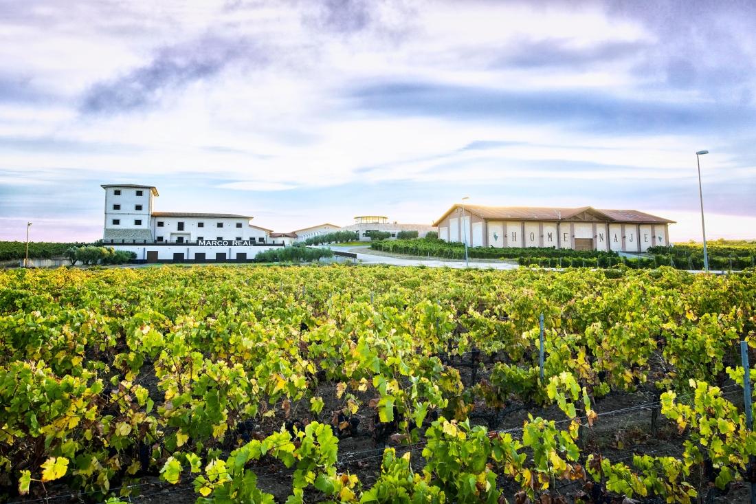 Olite.Los vinos de Bodegas Marco Real consigen muy buenas puntuaciones en la Guia Peñin