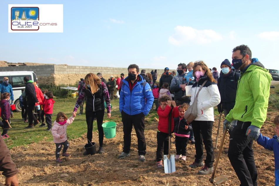 Olite.Unas 100 personas participan en el Día del árbol