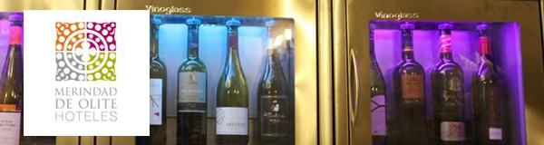 Wine-Bar Merindad de Olite. Olite