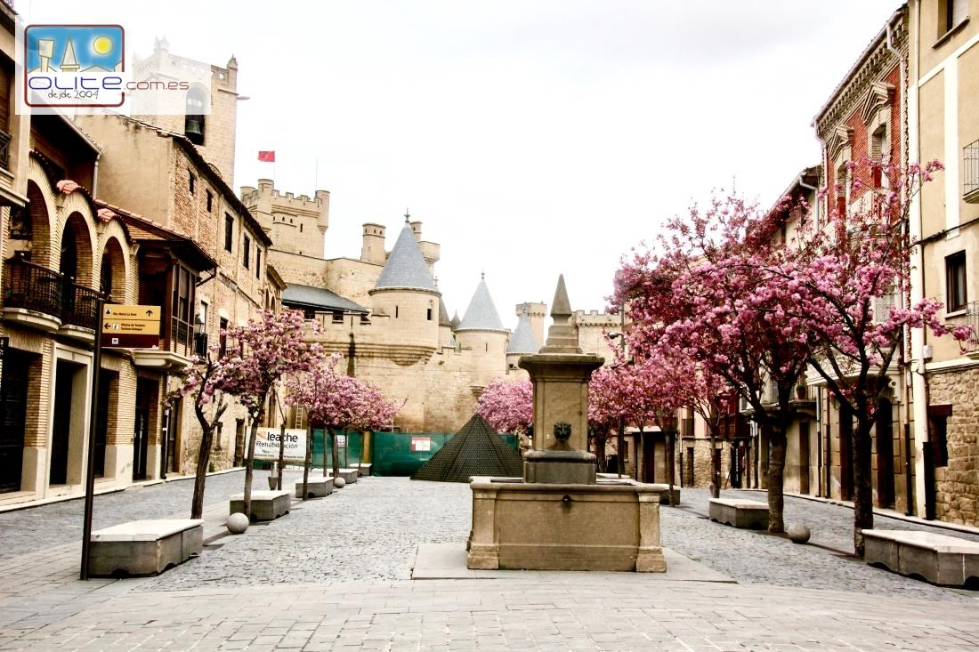 Castillo, Palacio Real de Olite . Olite